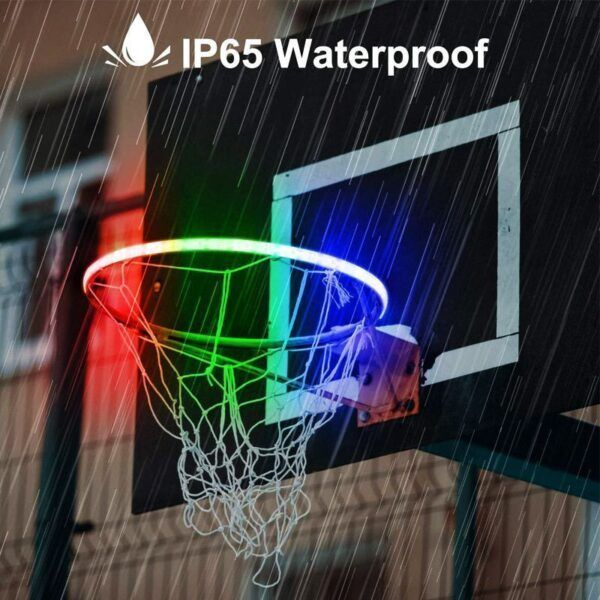 LED Basketball Light23.jpg
